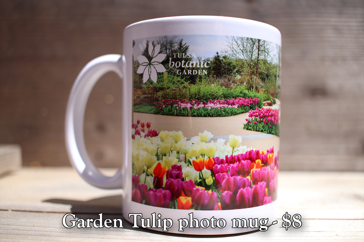 Tulip Photo Mug